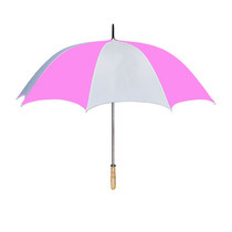 The Head Master's Umbrella