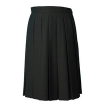 Black Box Pleat Skirt