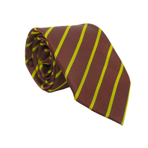 photo of St Elizabeth's School Tie